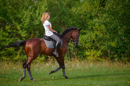 Portrait of a beautiful young girl rider and her brown horse Standard-Bild