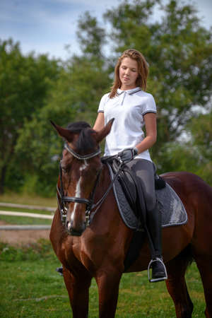Portrait of a beautiful young girl rider and her brown horse