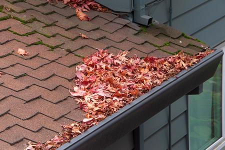 Toit de maison, gouttières obstruées par des feuilles, des bâtons et des débris d'arbres. Risque accru de rouille, besoin accru d'entretien et risque d'incendie potentiel.