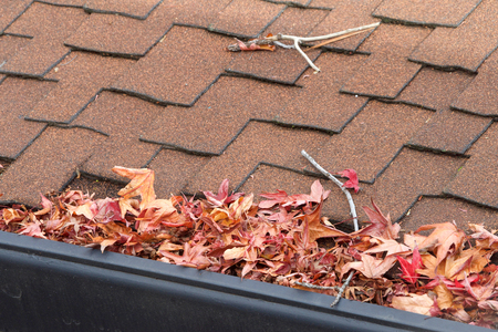 Rain gutters on roof without gutter guards, clogged with leaves, sticks and debris from trees. Increased risk of clogged gutters, rusting, increased need for maintenance and is a potential fire hazard Stock Photo
