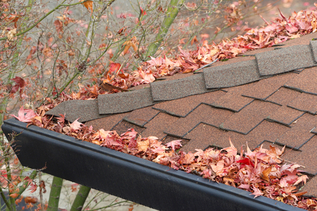 Rain gutters on roof without gutter guards, clogged with leaves, sticks and debris from trees. Increased risk of clogged gutters, rusting, increased need for maintenance and is a potential fire hazard Stok Fotoğraf
