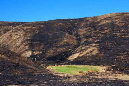 Hillside charred by the wild fire that raged through Napa and Sonoma counties in California, fence along left side and a small patch of green grass spared from the inferno. Blue sky background