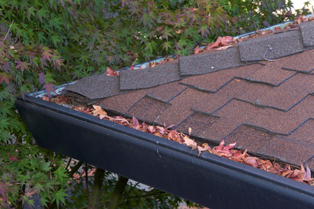 Gutters on shingle roof without gutter guards, clogged with leaves from trees. Increased risk of clogged gutters, rusting, increased need for maintenance and is a potential fire hazard.