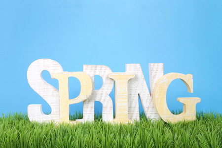 Wooden letters spelling SPRING sitting in green grass with blue background.