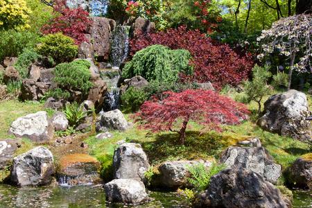 Japanese garden with waterfall, beautiful relaxing scene. Фото со стока