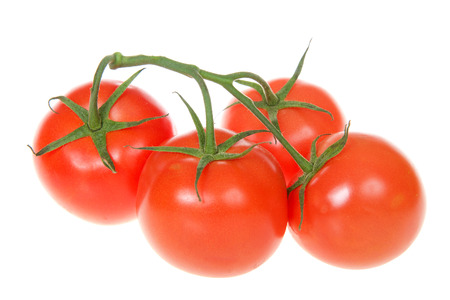 group of ripe red tomatoes on the vine isolated on white. The tomato is the worlds most popular fruit with more than 60 million tons are produced each year.