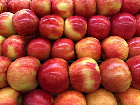 Close up on Honey Crisp red and golden apples in a fruit bin display for sale. Honeycrisp is an apple cultivar developed at the Minnesota Agricultural Experiment Station at the University of Minnesota