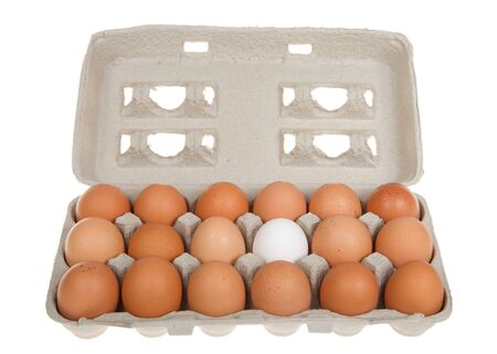 Carton of brown eggs with one white egg.