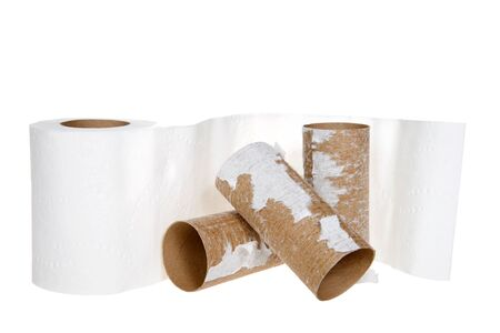 Roll of Toilet Paper with empty rolls stacked in front of it isolated on white. Archivio Fotografico - 143060160