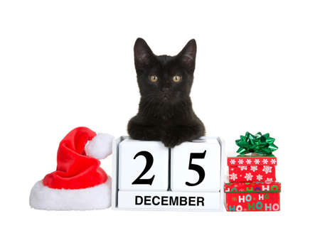Adorable black kitten relaxed laying on calendar blocks with Holiday date for Christmas, December 25. Santa hat and presents beside. Isolated on white.