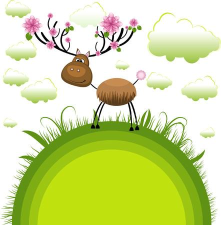 Spring reindeer