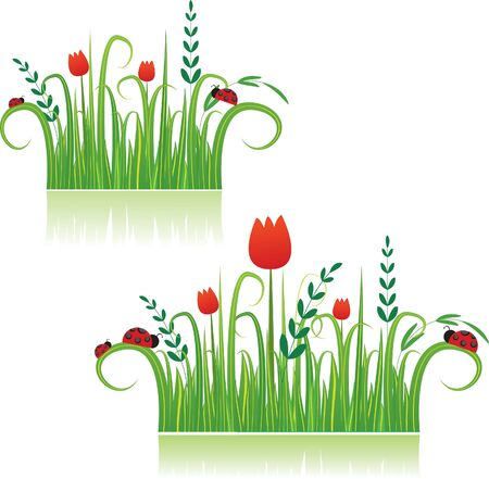 Summer colorful meadow beautiful for you.Vector illustration Illustration