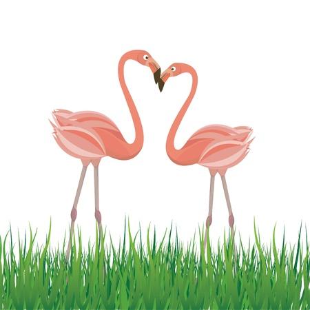 Two flamingo in love. Vector illustration