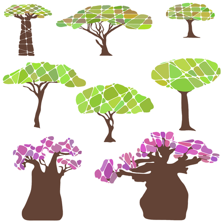 africa baobab tree: Colorful set with tree and leafs