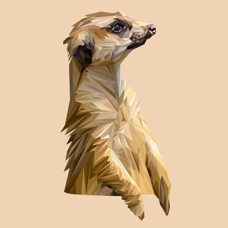mongoose: Mongoose animal low poly design. Triangle vector illustration.