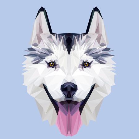 Husky dog low poly design. Triangle vector illustration. Stock Illustratie
