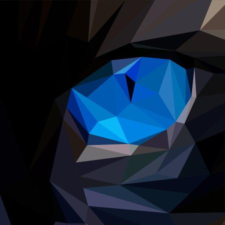 cat eye: Blue cat eye low poly design. Triangle vector illustration. Illustration