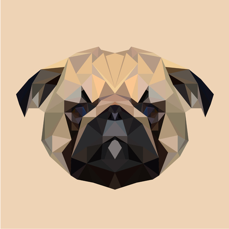 pug puppy: Pug puppy dog low poly design. Triangle vector illustration.