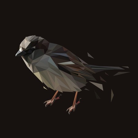 sparrow: Sparrow low poly design. Triangle vector illustration. Illustration
