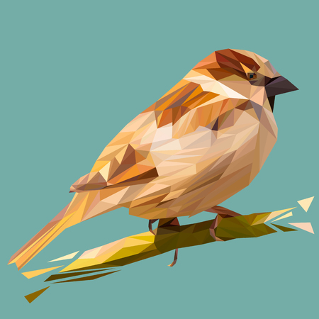 Sparrow bird animal low poly design. Triangle vector illustration.