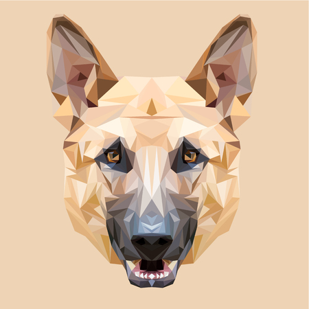 shepherds: Dog German shepherd low poly design. Triangle vector illustration.