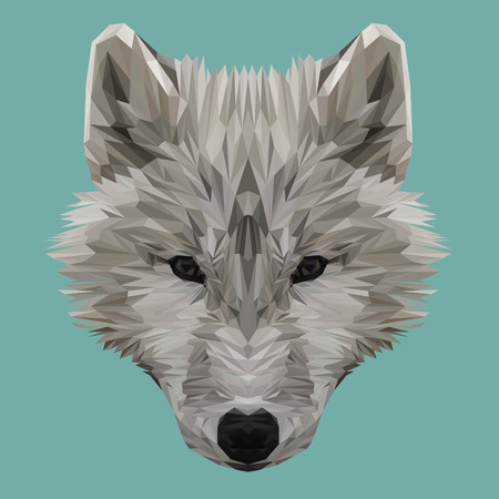 triangular eyes: Wolf animal low poly design. Triangle vector illustration.