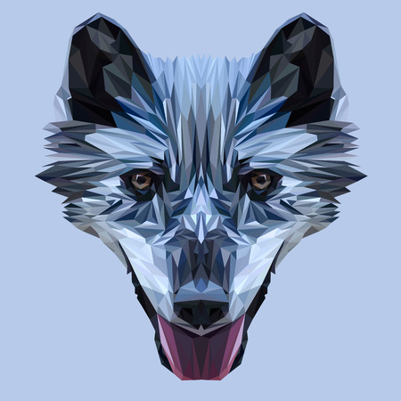 triangular eyes: Wolf low poly design. Triangle vector illustration. Illustration