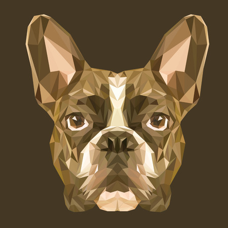 French Bulldog low poly design. Triangle vector illustration.