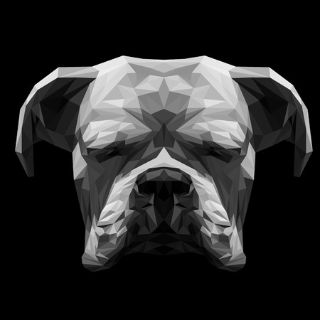 perro boxer: Boxeador blanco perro animales sea baja y el diseño de poli. ilustración vectorial triángulo. Vectores