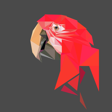 Parrot low poly design. Triangle vector illustration. Illustration