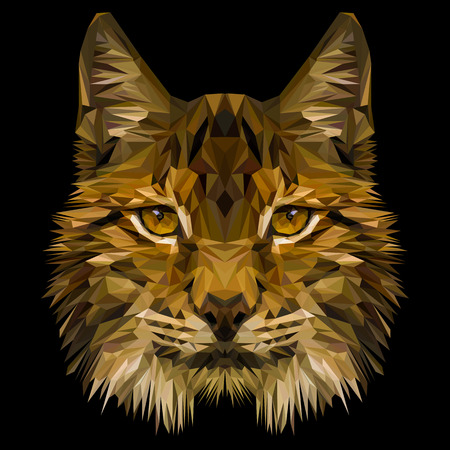 Lynx cat animal low poly design. Triangle vector illustration.