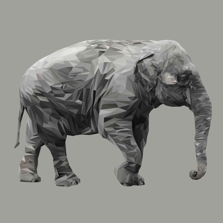 Elephant animal low poly design. Triangle vector illustration.