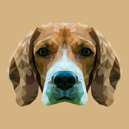 Beagle dog animal low poly design. Triangle vector illustration. Иллюстрация