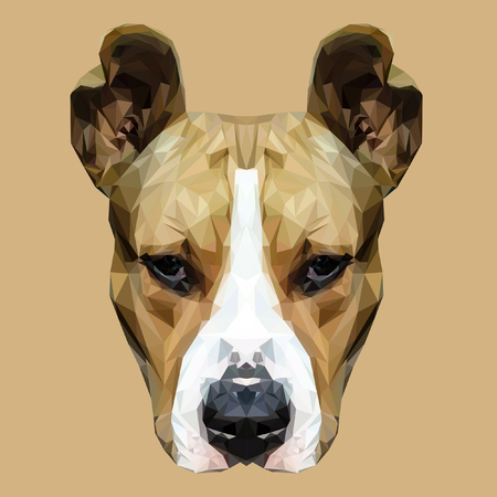 stafford: American Staffordshire Terrier dog animal low poly design. Triangle vector illustration. Illustration
