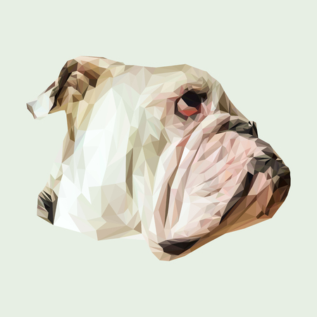 Inglés bulldog perro animales sea baja y el diseño de poli. ilustración vectorial triángulo. Ilustración de vector