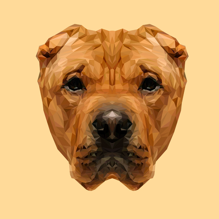 sharpei: Chinese Shar-Pei dog animal low poly design. Triangle vector illustration.
