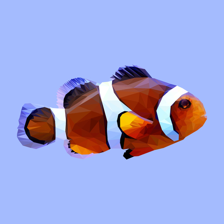 clownfish: Clownfish fish clown animal low poly design. Triangle vector illustration.