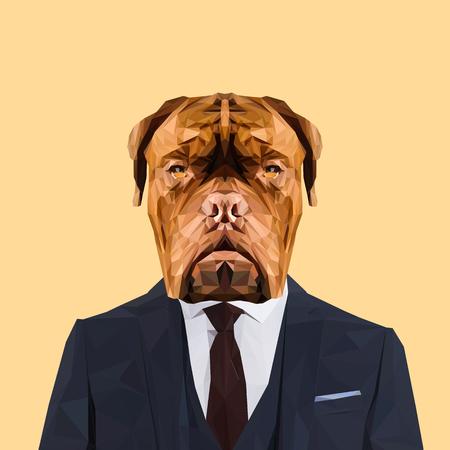 navy blue suit: Dogue de Bordeaux dog animal dressed up in navy blue suit with red tie. Business man. Vector illustration.Dogue de Bordeaux dog animal dressed up in navy blue suit with red tie. Business man. Vector illustration.
