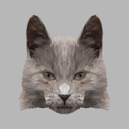 Cat low poly design. Triangle  illustration.