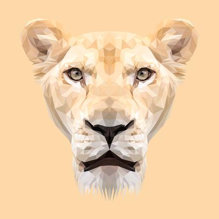 lioness: Lioness animal low poly design. Triangle illustration. Illustration