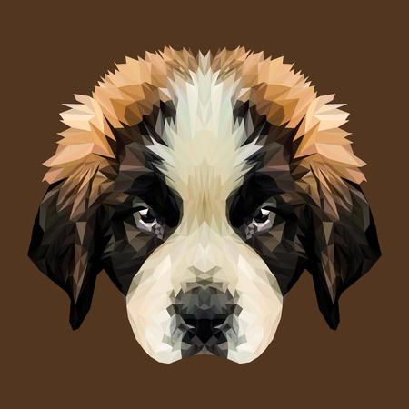Saint Bernard puppy dog low poly design. Triangle  illustration.