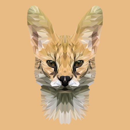 Wild cat lynx low poly design. Triangle  illustration.