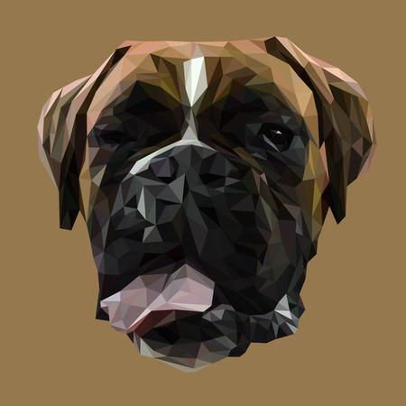 Boxer dier laag poly ontwerp. Driehoek vector illustratie. Vector Illustratie