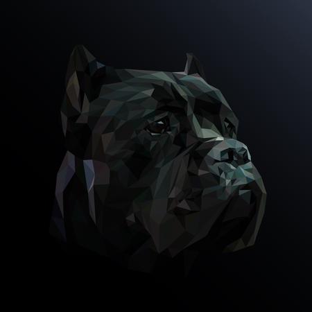 Cane Corso dog animal low poly design. Triangle vector illustration.