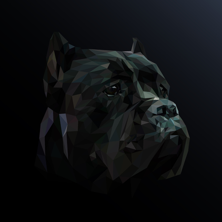 Cane Corso dog animal low poly design. Triangle vector illustration.
