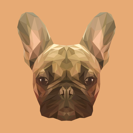 French bulldog animal low poly design. Triangle vector illustration. Illustration
