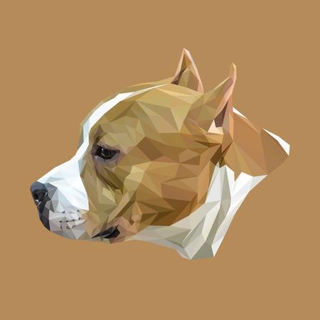 stafford: Stafford dog animal low poly design. Triangle vector illustration. Illustration