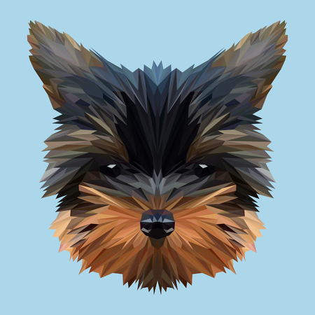Terrier animal low poly design. Triangle vector illustration. Illustration