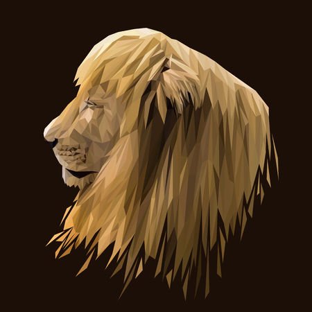 Lion animal low poly design. Triangle vector illustration.