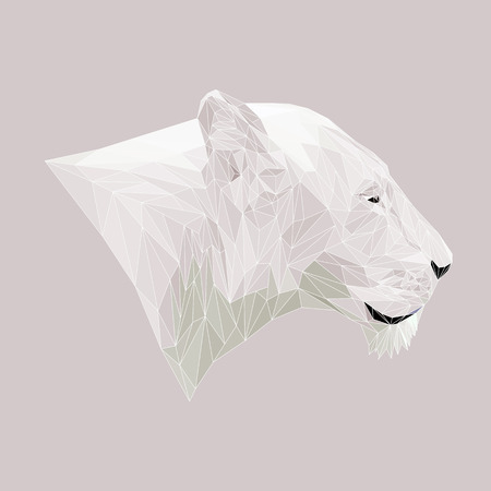 lioness: Lioness animal low poly design. Triangle vector illustration.